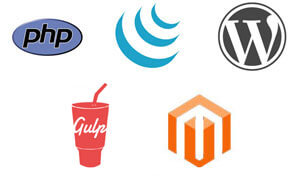 PHP, jQuery, WordPress, Gulp, Magento Development