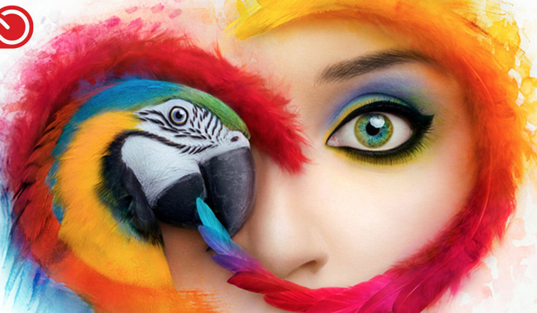 Is Adobe Creative Cloud worth it for freelancers