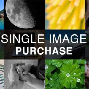 Single Stock Image Purchase